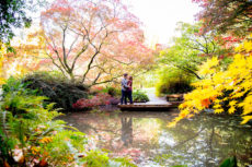 Seattle Arboretum Engagement Session Mariah Gentry Photography Affordable